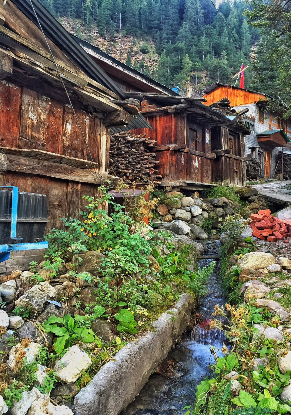 batseri-village-sangla-valley-himachal-pradesh