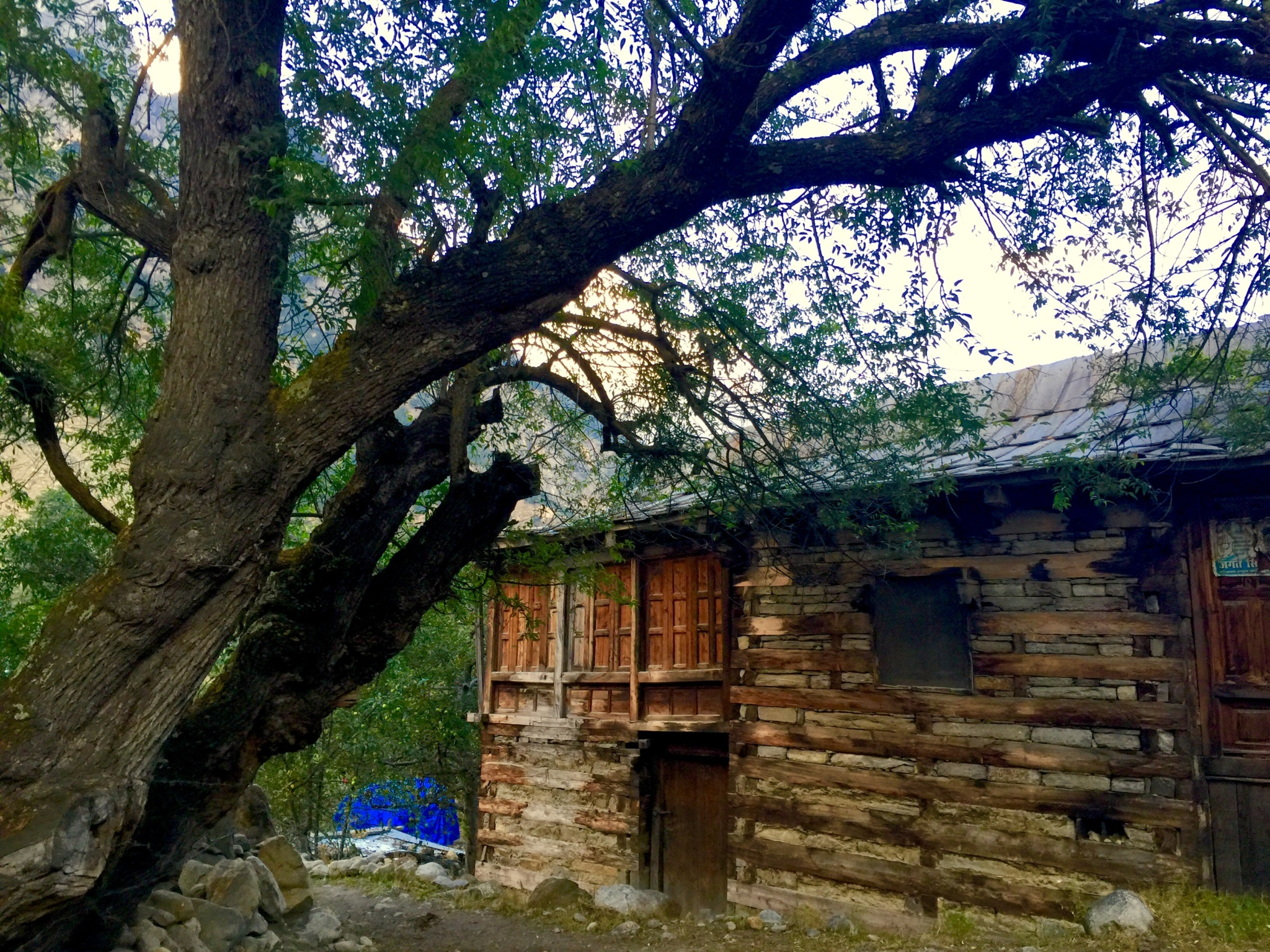 batseri-village-sangla-valley