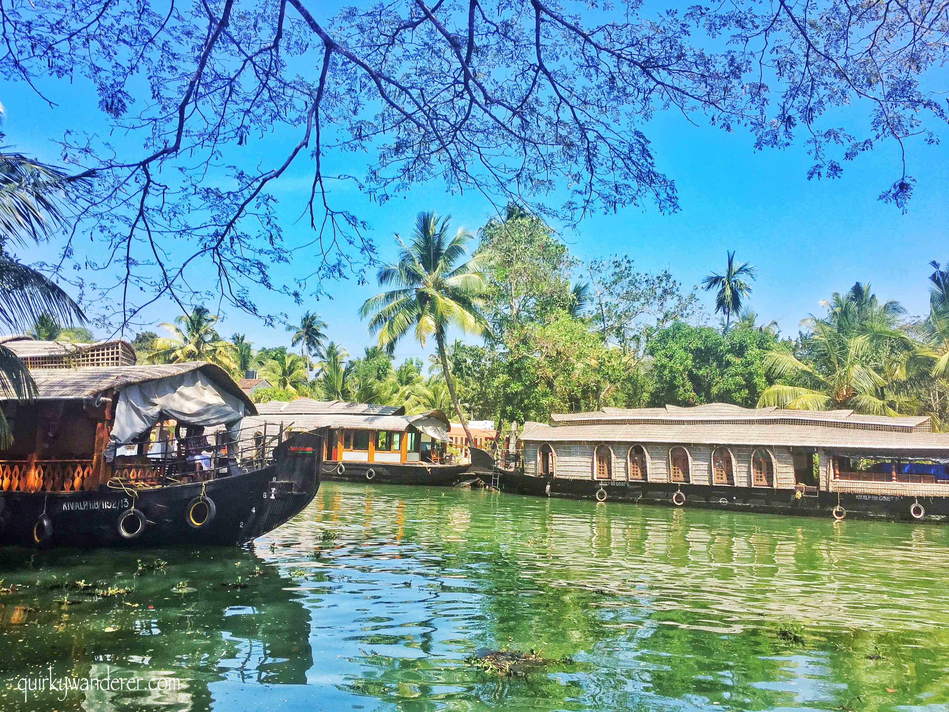 Scenic backwaters of Kumarakom