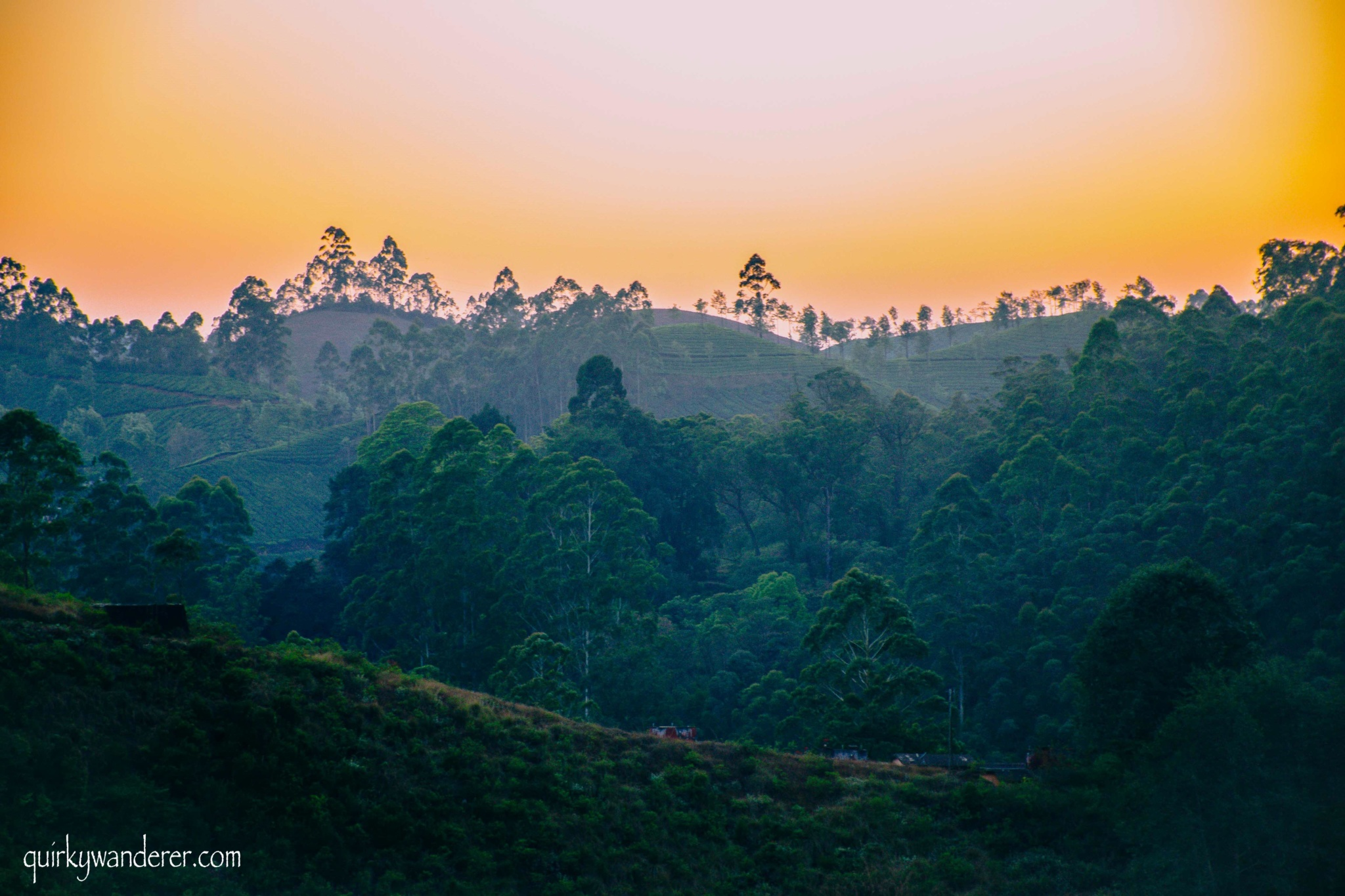 sunset at munnar