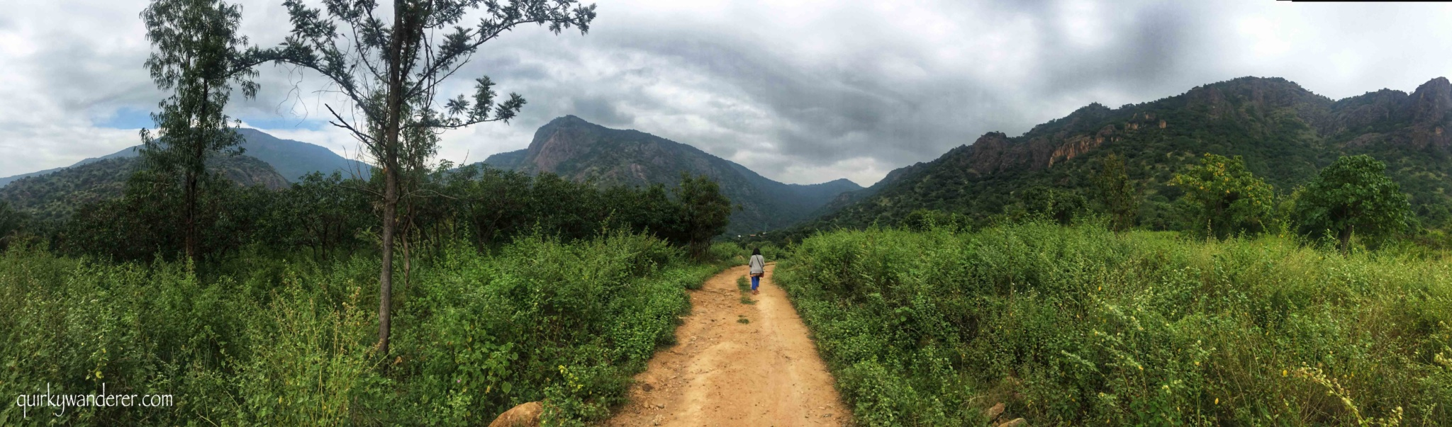Kamarajar valley near Madurai is an offbeat getaway for those seeking serenity and quiet. This travelogue talks about an adventurous lesser known trek in Palani hills arranged by the Double Dutch resort.