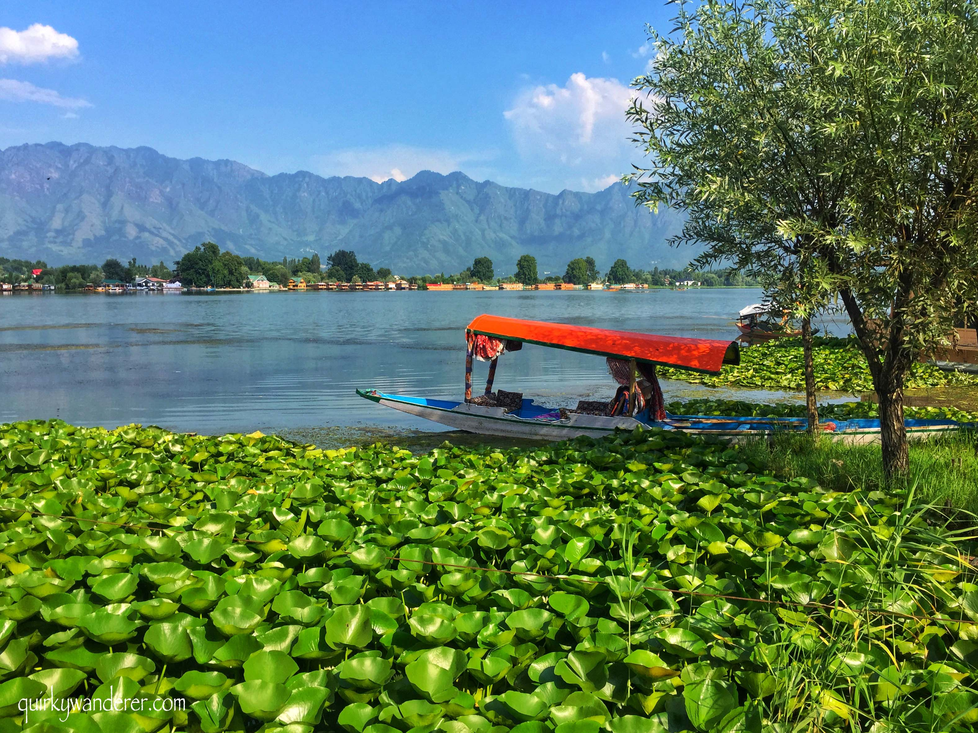 Nigeen lake in Srinagar