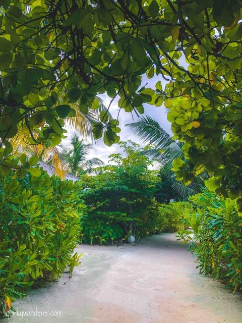 Best luxury island resort in Maldives