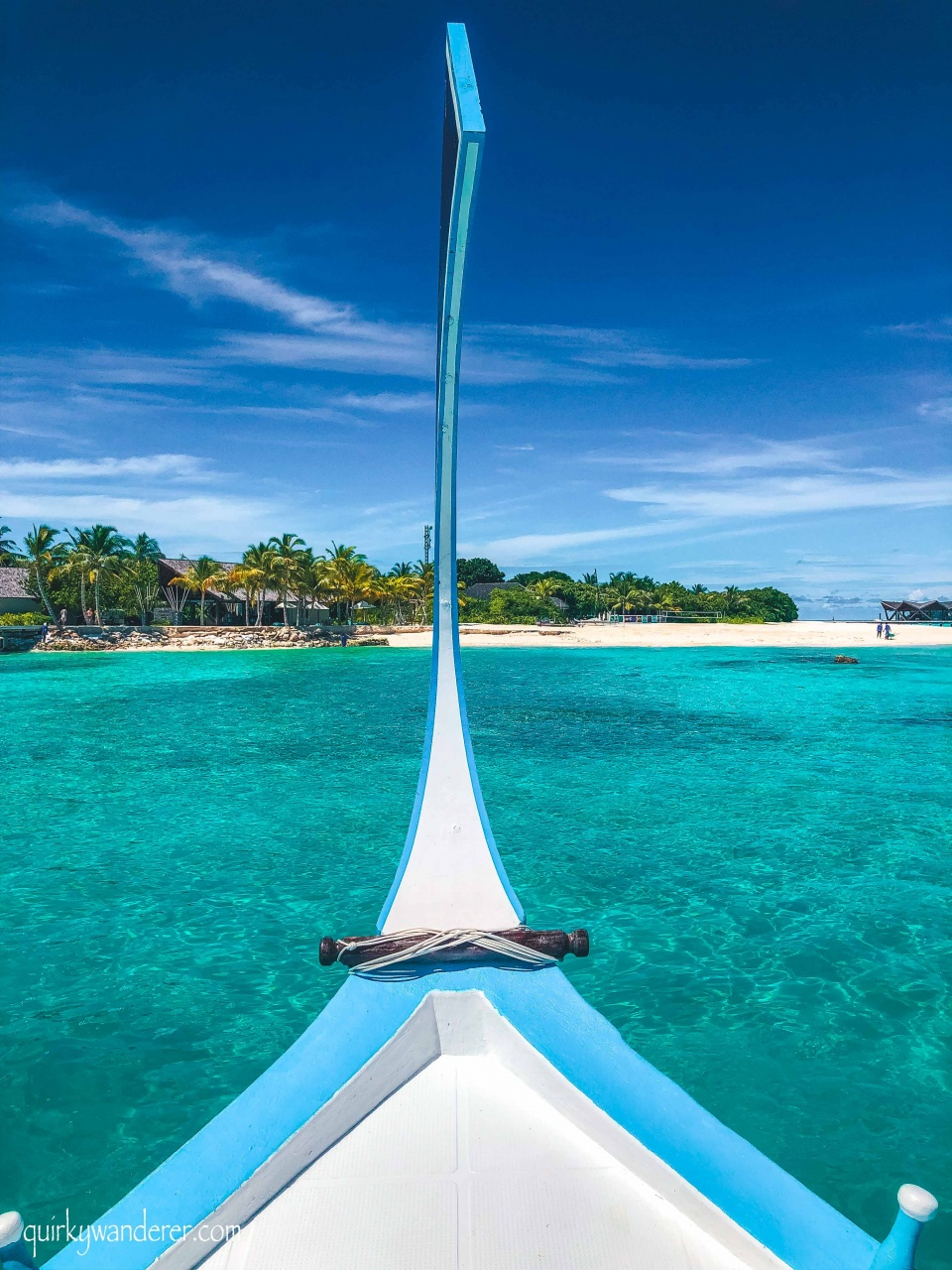 dolphin excursion movenpick maldives
